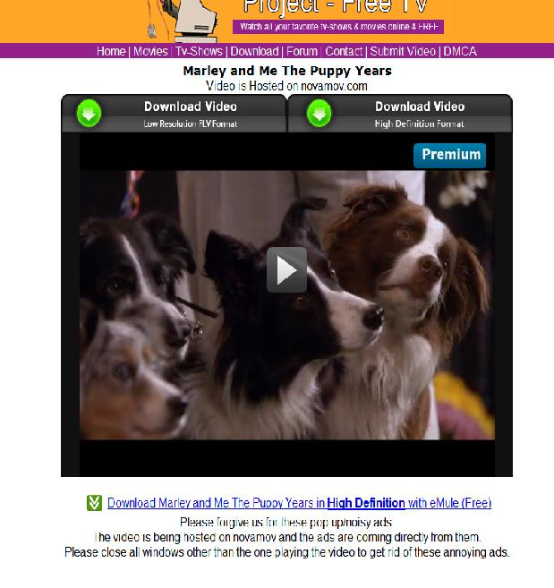 Marley and Me – The Puppy Years